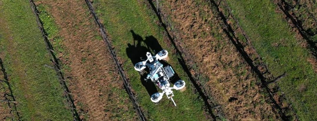 Агроробот Yanmar будет использоваться для мониторинга и контроля роста сельскохозяйственных культур